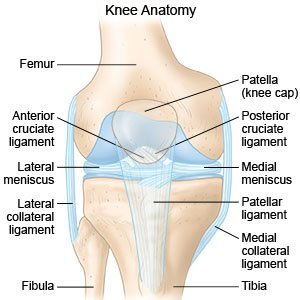 Knee Sprain on lcl diagram
