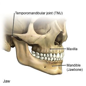 Jaw Dislocation - What You Need to Know