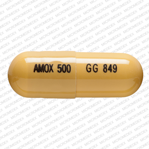 AMOX TR-K CLV 875-125 MG TAB - Upload and.