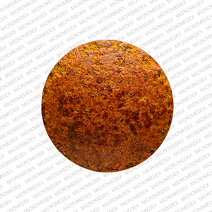 Phenazopyridine hydrochloride 100 mg 701 Back