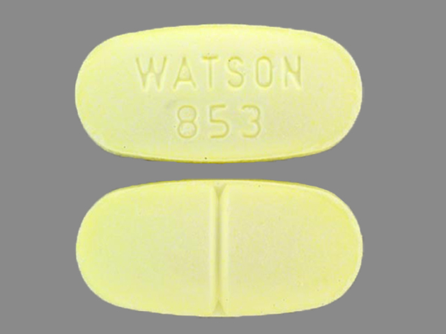 Acetaminophen and Hydrocodone Bitartrate WATSON 853