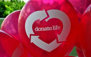 Donate Life: What You Need To Know About Organ Donorship