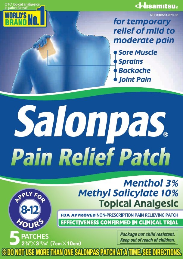 salonpas pain relief  patch  hisamitsu pharmaceutical co   inc