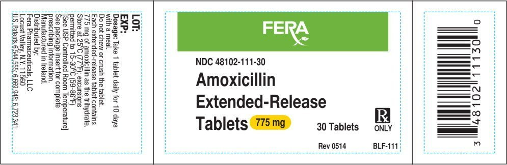 What does amoxicillin pills look like