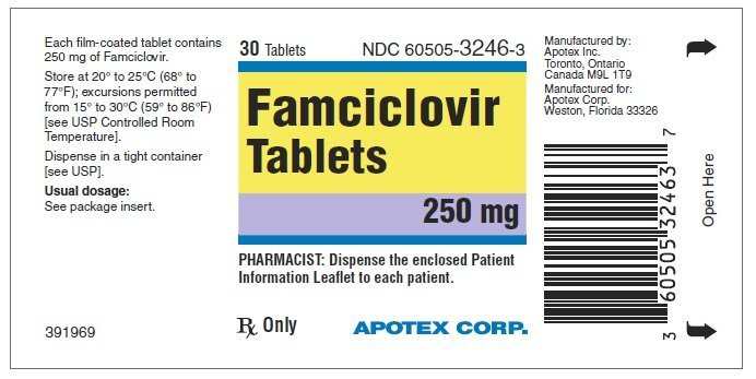 Famvir prescribing information